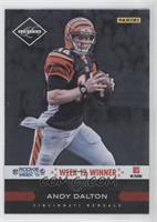 Andy Dalton Limited