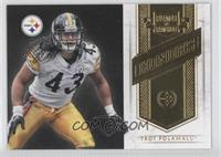 Troy Polamalu /249