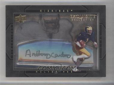 2011 Upper Deck Exquisite Collection Dimensions #D-AC - Anthony Carter