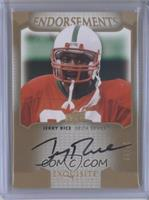 Jerry Rice /45