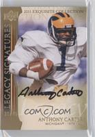 Anthony Carter /45