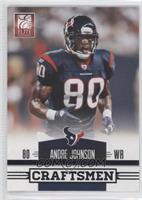 Andre Johnson /49