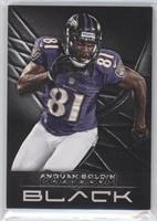 Anquan Boldin /349