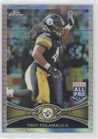 Troy Polamalu /216