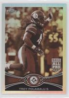 Troy Polamalu /99