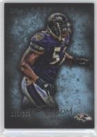 Ray Lewis /252