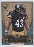 Troy Polamalu /15