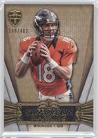 Peyton Manning /462
