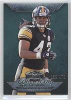 Troy Polamalu /170