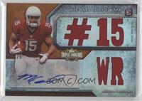 Michael Floyd (#15 WR) /25