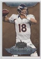 Peyton Manning /310