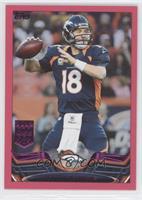 Peyton Manning /399