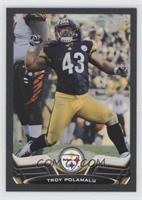 Troy Polamalu /58