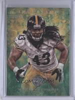 Troy Polamalu /199