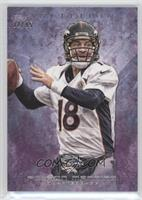 Peyton Manning /95