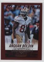 Anquan Boldin /20