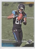 Allen Robinson (Two Hands on Ball)