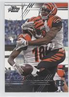 A.J. Green (Touchdown Celebration)