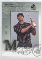 Tiger Woods /3499