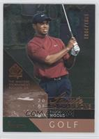 Tiger Woods /2001