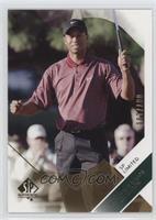 Tiger Woods /100