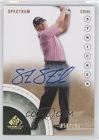 Steve Stricker /100