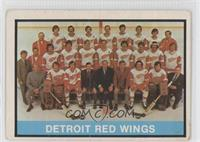 Detroit Red Wings Team