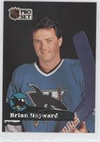 Brian Hayward
