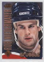 Rob Niedermayer /1500