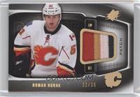 Roman Horak /35