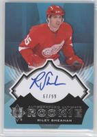 Riley Sheahan /99