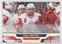 Pavel Datsyuk /10