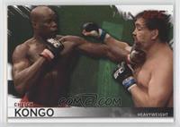 Cheick Kongo /88