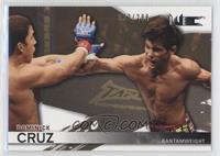 Dominick Cruz /288