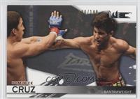 Dominick Cruz /188