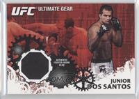 Junior Dos Santos