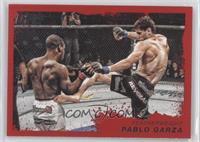 Pablo Garza /8