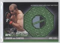 Junior Dos Santos /88