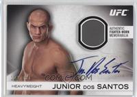 Junior Dos Santos /150