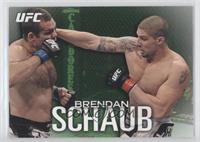 Brendan Schaub /88