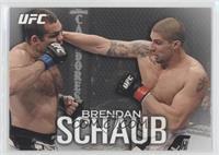 Brendan Schaub /125