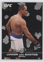 Junior Dos Santos /25