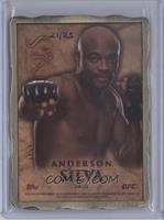 Anderson Silva /25