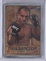 Junior Dos Santos /109