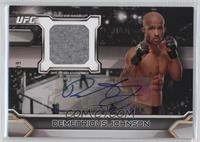 Demetrious Johnson /299