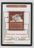 Anatomy of a Magic Card