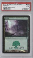Forest [PSA 9]