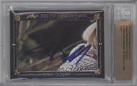 Abigail Breslin, Chris O'Donnell /1 [BGS AUTHENTIC]