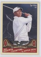 Tiger Woods (Dark Storm Background)