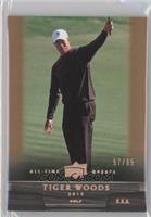 Tiger Woods /65